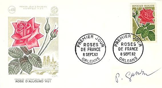 1962 rose d aujourd hui copie