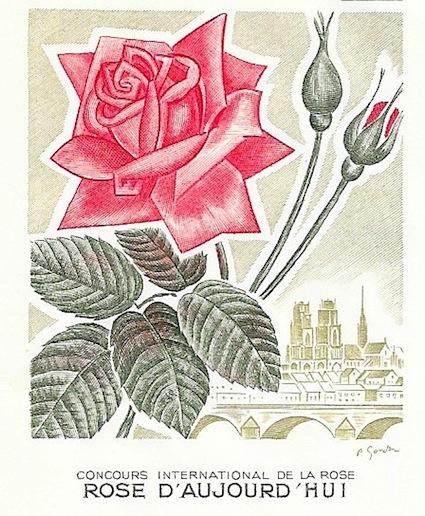 1962 rose d aujourd hui