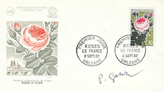 1962 rose d hier copie