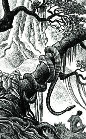 Arbre au serpent vignette