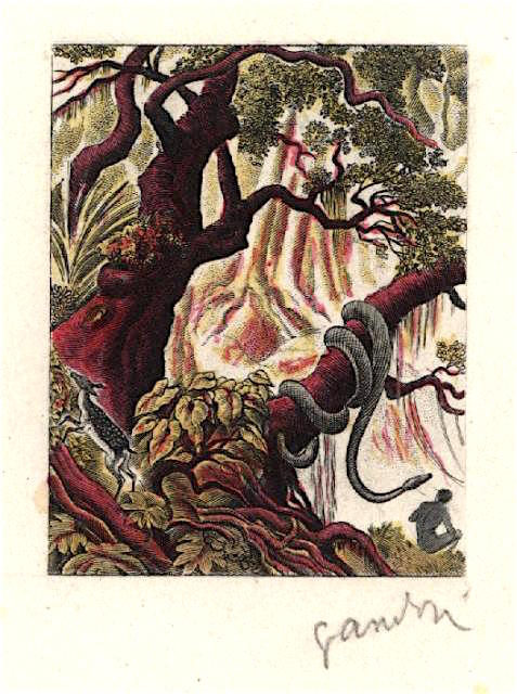 Fr equat africa 1952 yvert pa53a scott c37 unadopted garden of eden by gandon multicolor b ap detail